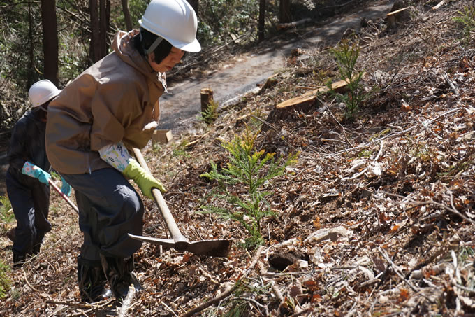 森林組合との事業提携による、持続可能な豊かな森づくり