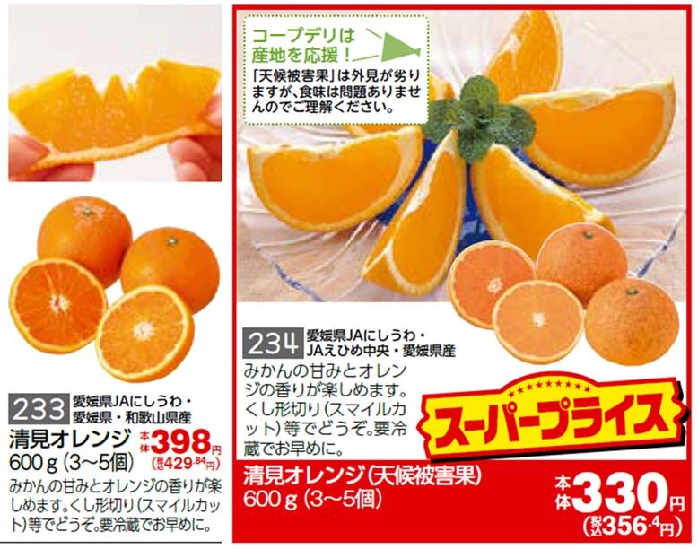 規格外農産品を販売するチラシのイメージ