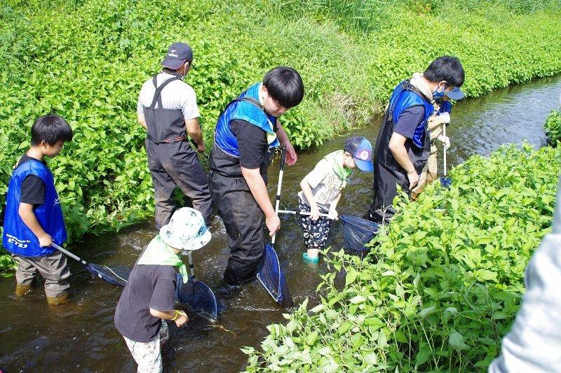 【川のがっこう】ホタル再生活動と逆川の魚さがしを開催しました