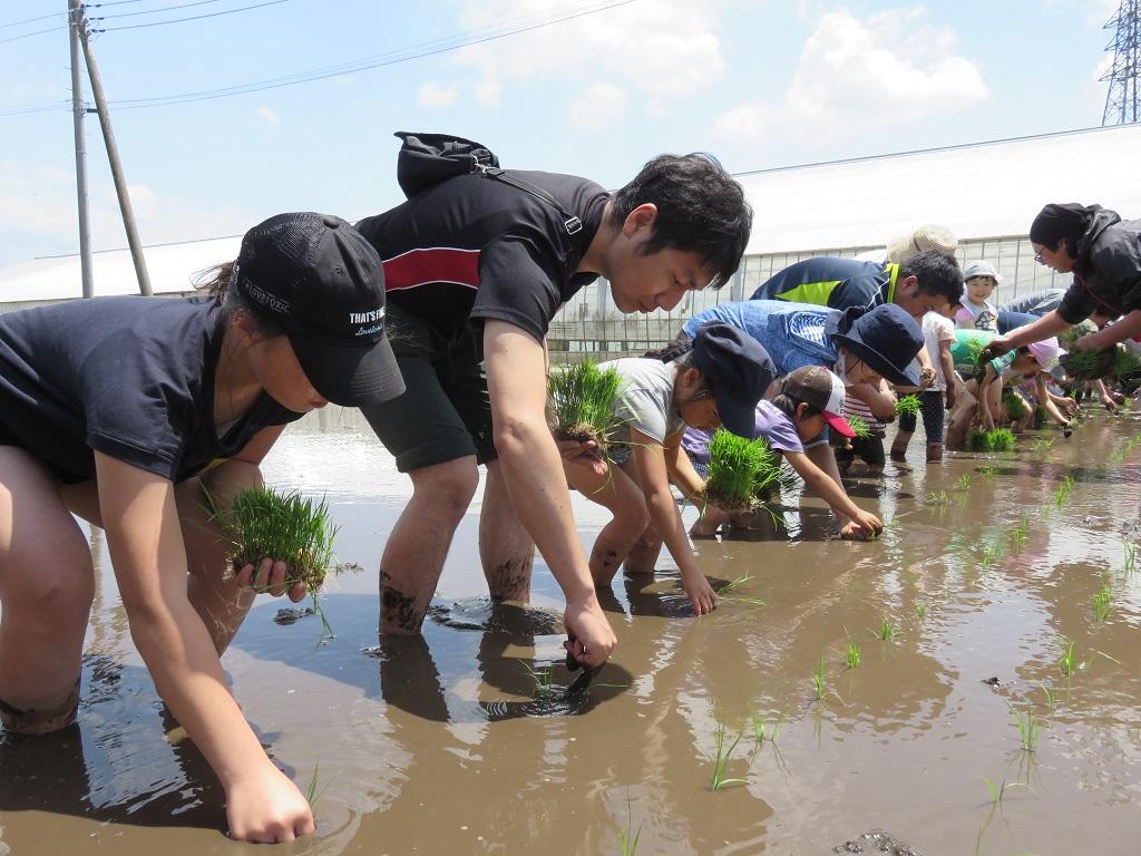 春の生産者交流会「田植え」を開催しました