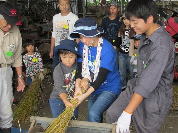 秋の生産者交流会「稲刈り・さつまいも堀り」を開催しました